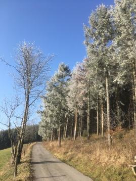 Eiswaldweg